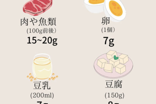 1日にどれくらいのタンパク質必要?
